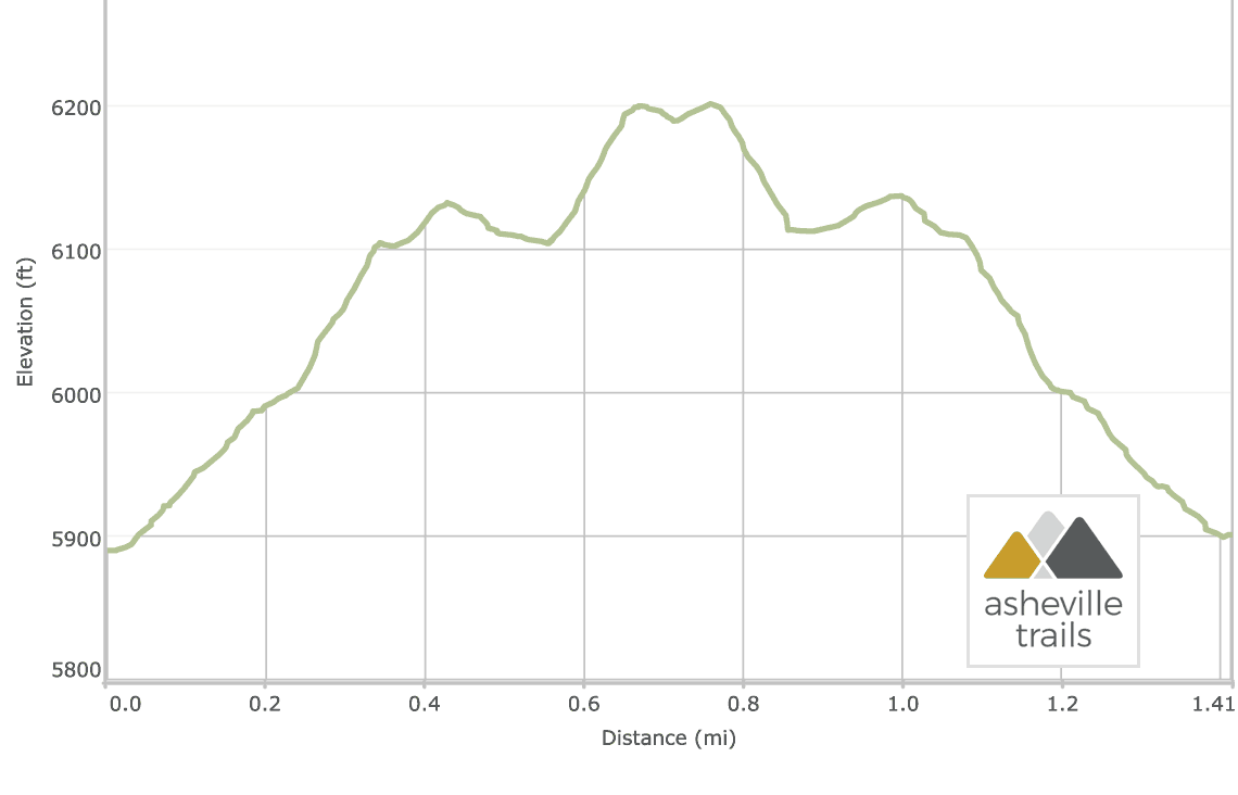 Black Balsam Knob: Elevation Profile
