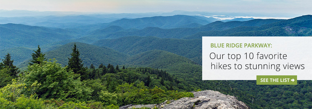 Asheville Blue Ridge Parkway hikes: our top 10 favorite trails to the best summit views