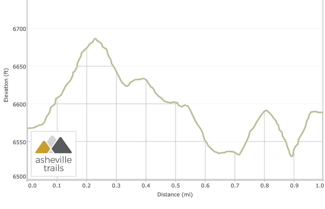Mount Mitchell Summit & Balsam Nature Trail: Elevation Profile