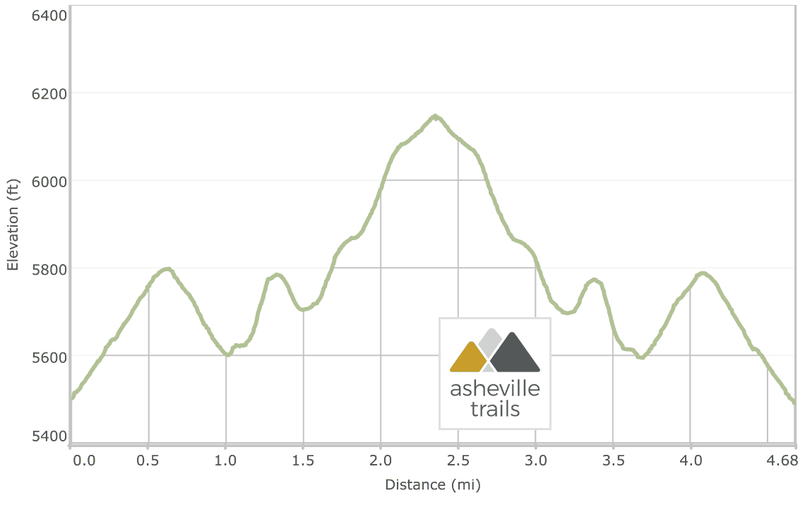 Roan Mountain winter hike: Carvers Gap to Grassy Ridge Elevation Profile