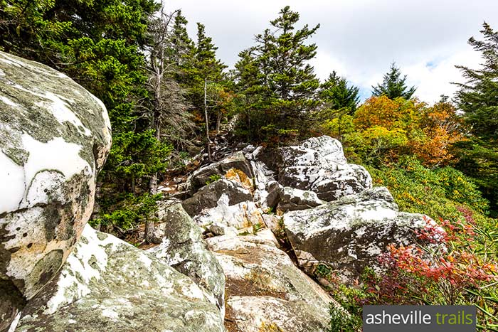 Shining Rock Wilderness: best hikes to Shining Rock Mountain and Cold Mountain in western NC