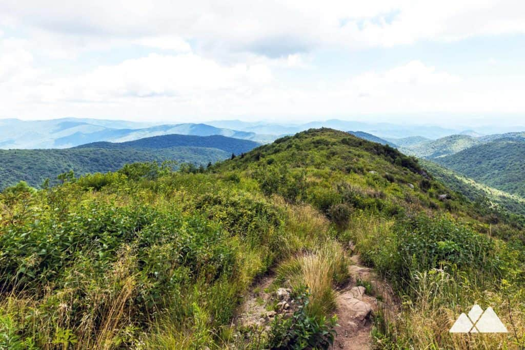 Follow this ultra-popular Blue Ridge Parkway hike to exceptional summit views from Black Balsam Knob, a bald wildflower-covered mountain on the Art Loeb Trail
