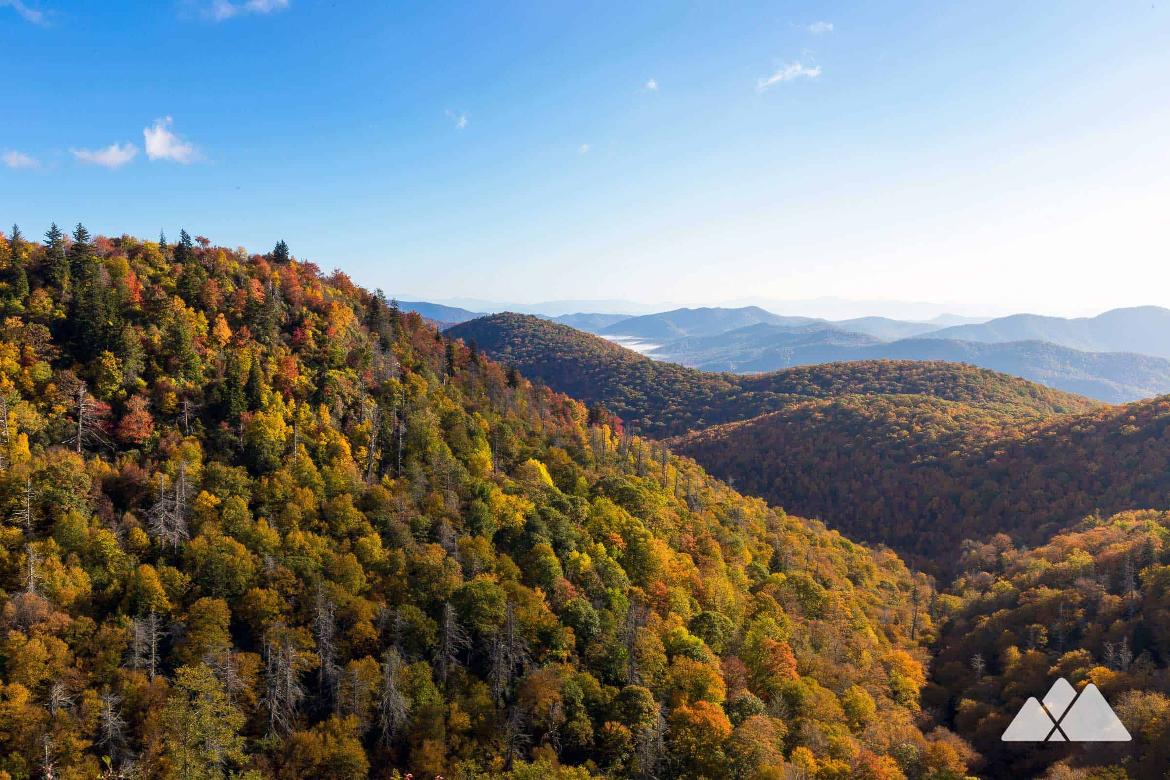 Top fall foliage hikes near Asheville and in the NC Mountains