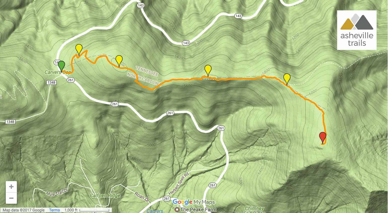 Roan Mountain Hiking The Appalachian Trail To Grassy Ridge