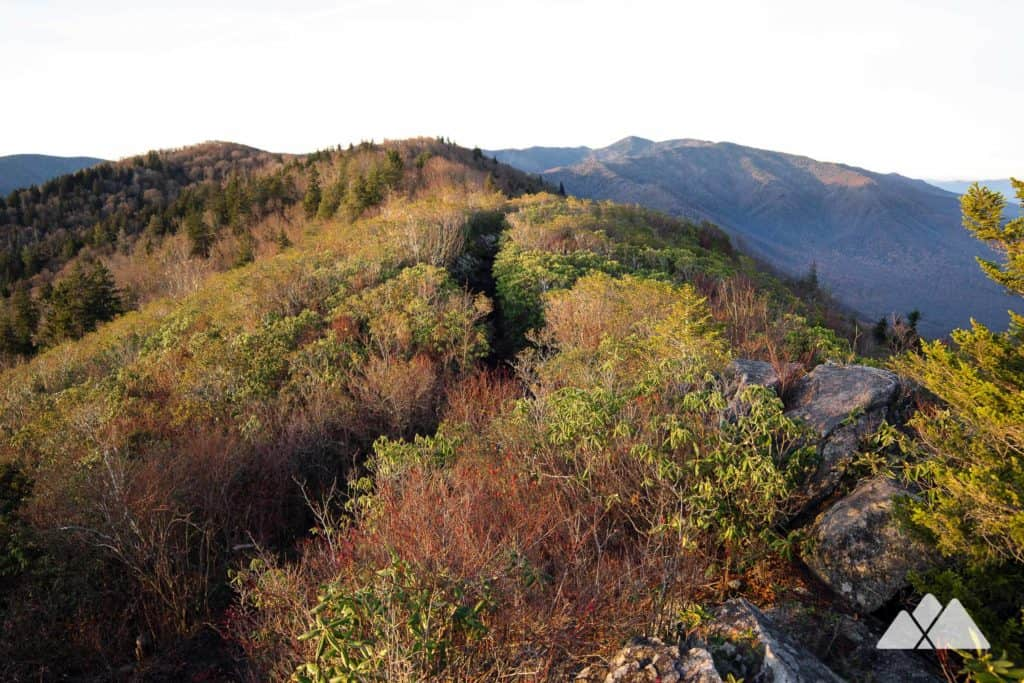 Mt Cammerer: hike the Appalachian Trail to a historic fire tower in Great Smoky Mountains National Park