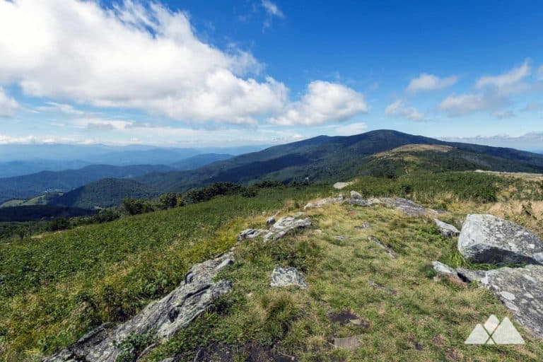 Roan Mountain: top hikes & backpacking adventures