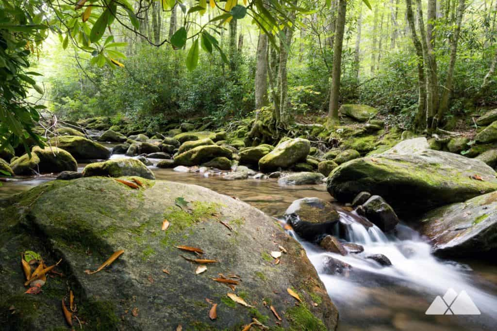 Cold Mountain NC: hike the Art Loeb Trail from Daniel Boone Boy Scout Camp