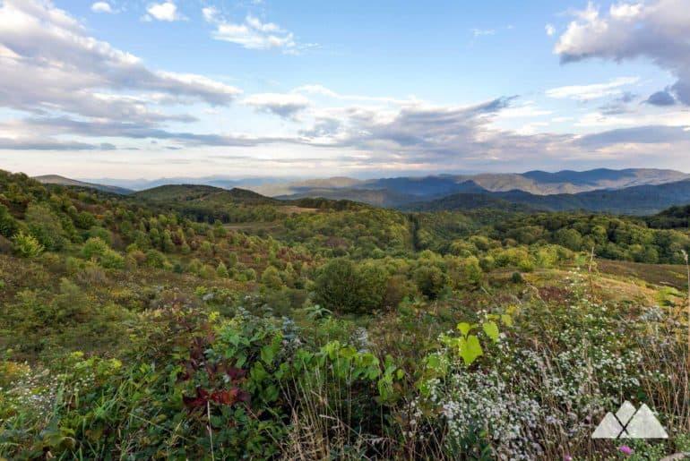 Appalachian Trail: Lemon Gap to Max Patch Mountain