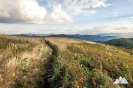 Max Patch on the Appalachian Trail