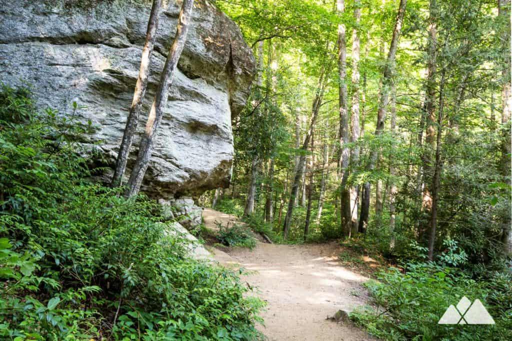 Moore Cove Falls Trail