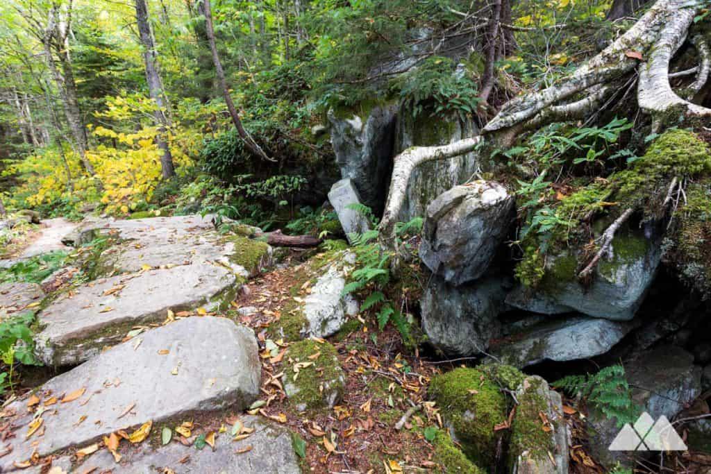 Profile Trail at Grandfather Mountain