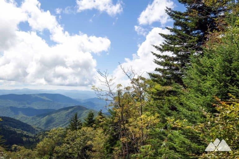 Richland Balsam Trail