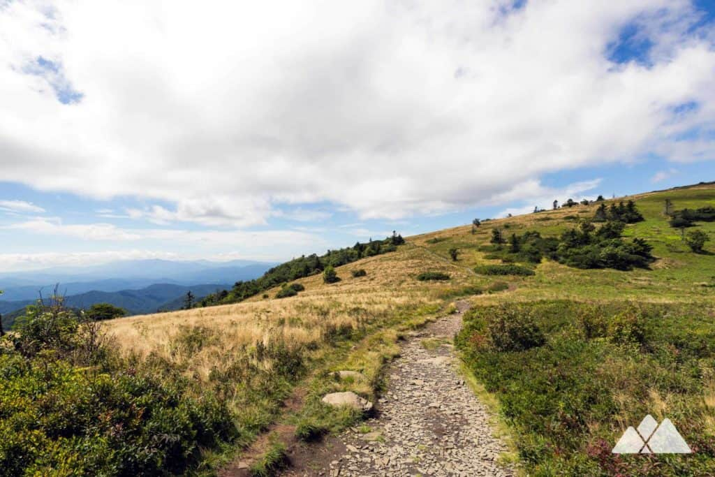 Roan Highlands to the Overmountain Shelter