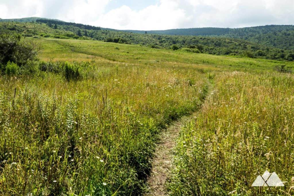 Sam's Knob Trail