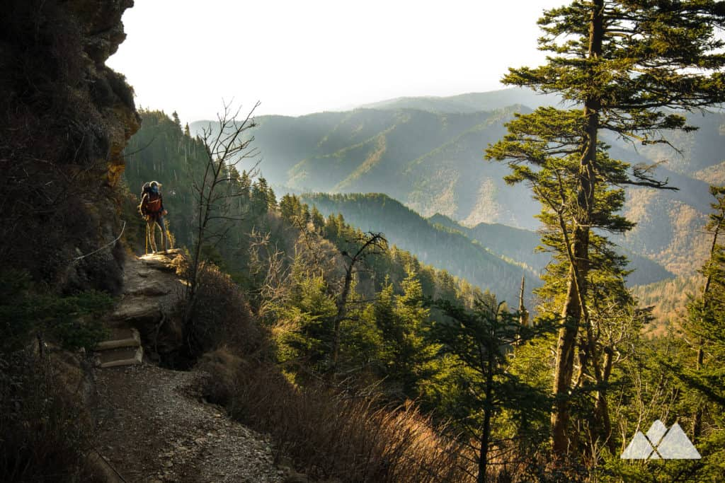Alum Cave Trail: hike to stunning views from Mount LeConte in the Great Smoky Mountains National Park