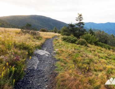 Roan Mountain & the Roan Highlands on the Appalachian Trail