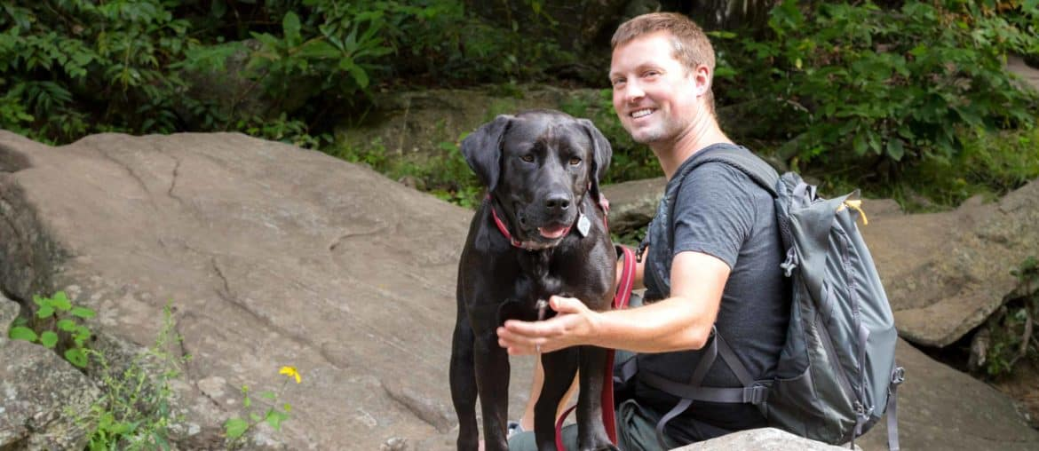 Asheville dog-friendly hikes: our favorite trails