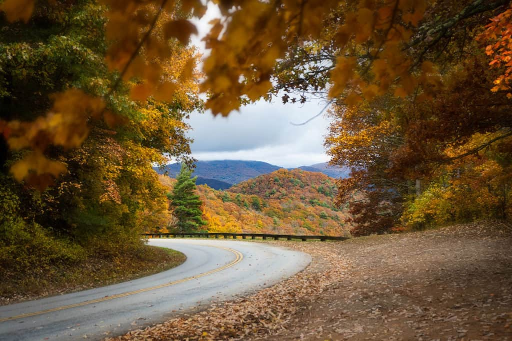 Find the best fall leaf color in the mountains near Asheville, NC