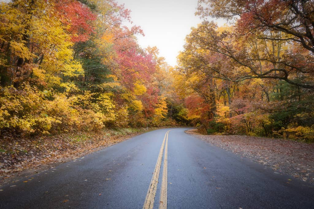 2019 Fall Color Guide for Asheville, NC